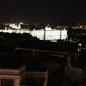 View of the Palace from the Dear Hotel