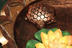 Feng Shui Tortoise